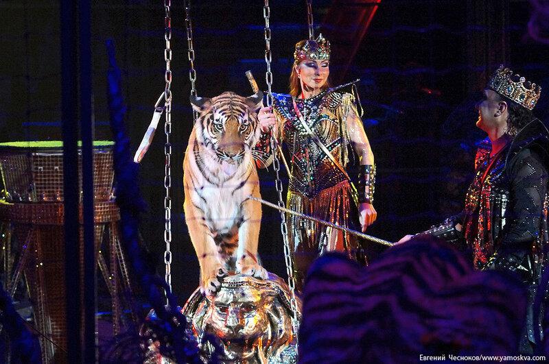 Зима. Королевский цирк. 20.02.15.46.Джунгли..jpg