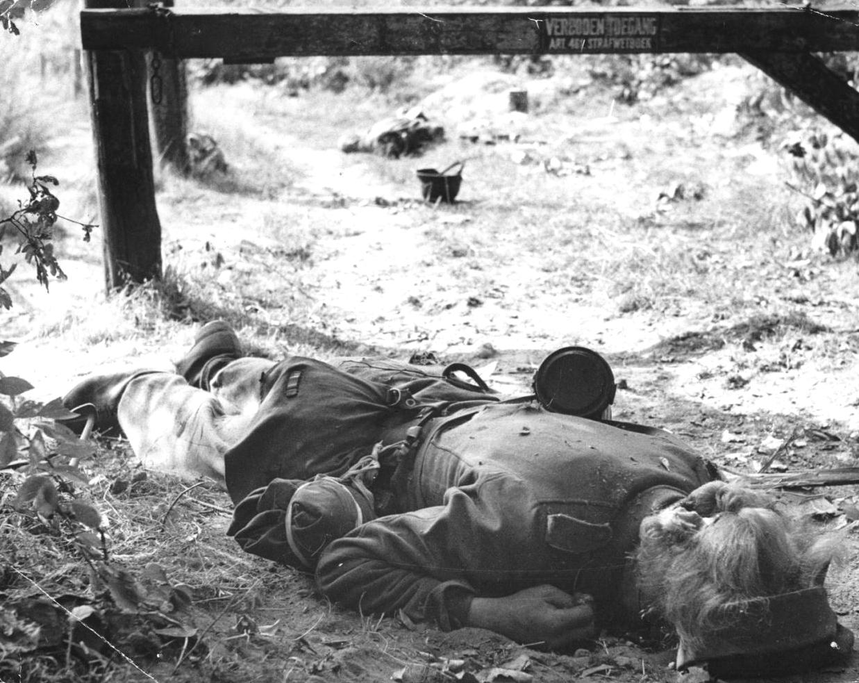 Солдаты моются онлайн 11 фотография