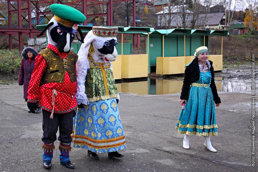 Романовская овечка встречает туристов теплохода «Н.А.Некрасов» на причале Тутаева