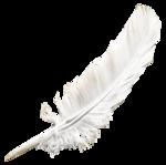 EenasCreation_Symphony_of_Angel_el9.png