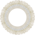 blushbutter_frame_lace_circle6c.png
