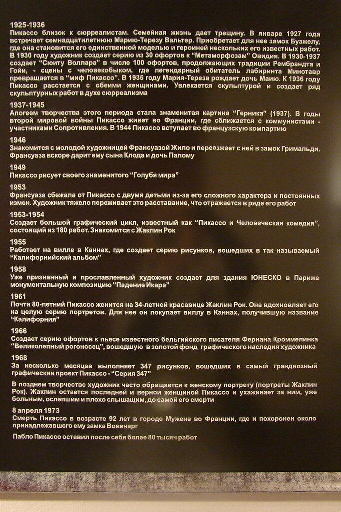 Выставка П. Пикассо в Красноярске. 04.02.12