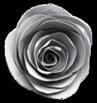 «Laitha_s_Microferk_Alluring»  0_80815_2a647c5d_S
