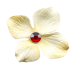 «Laitha_s_Microferk_Alluring»  0_80817_f51fdedb_S