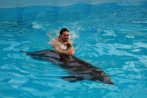 Плаванье с дельфином
