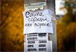 saska-vorobey-IMG_2093.jpg