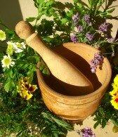 лечебные растения_lechebnye rastenija