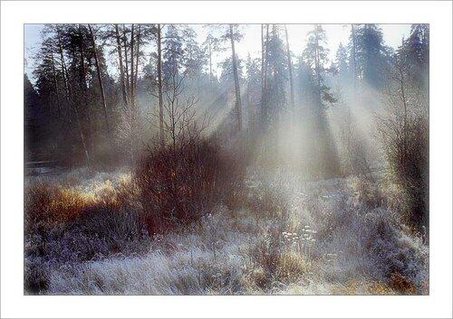 http://img-fotki.yandex.ru/get/5820/131884990.c/0_65a8b_383ca412_L.jpg