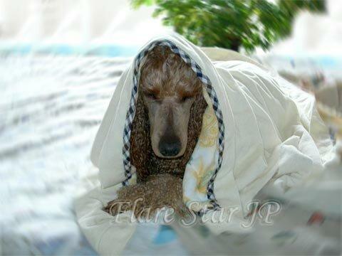Meditation after bath