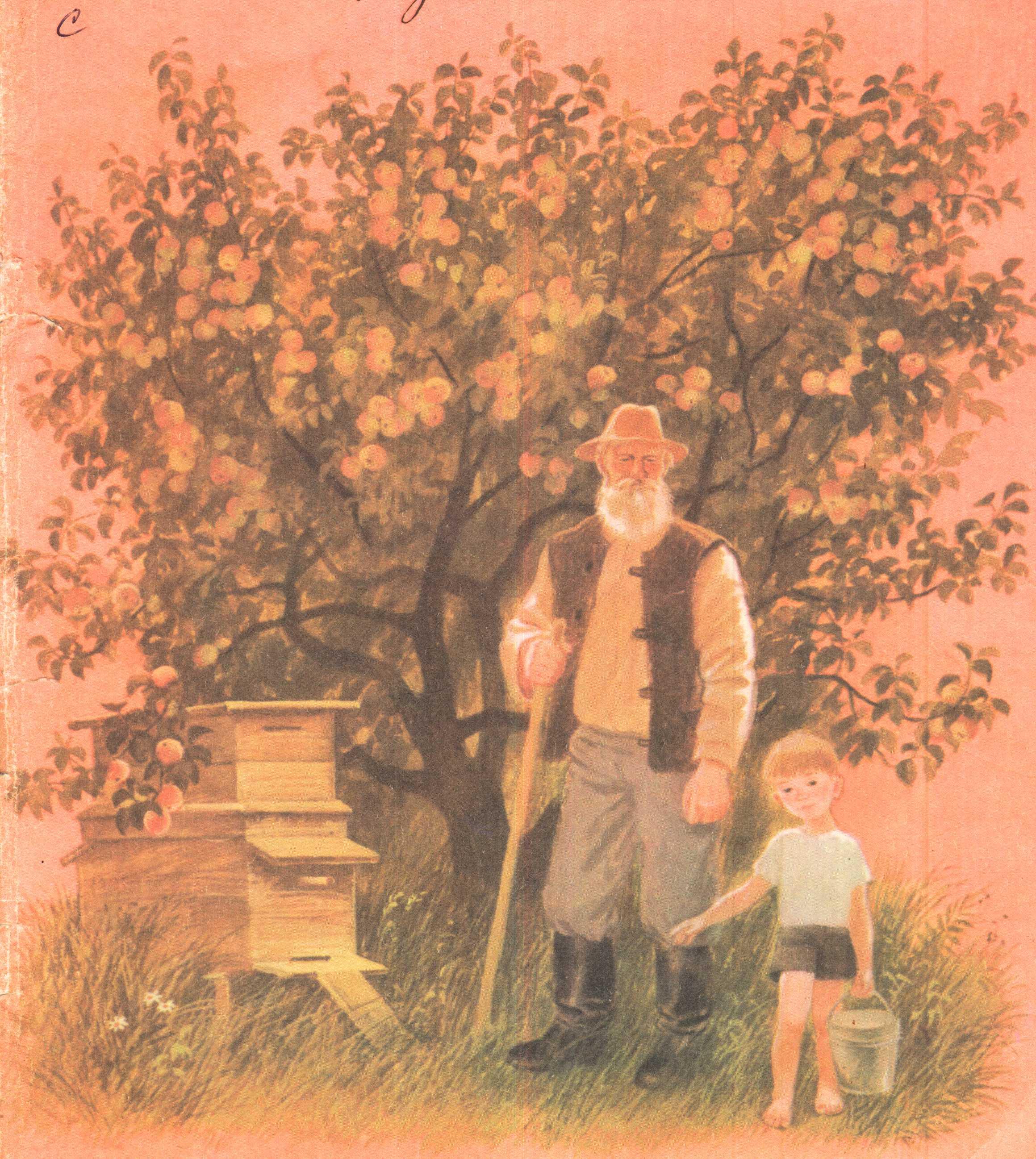 Яблоко от яблоки рассказ 8 фотография