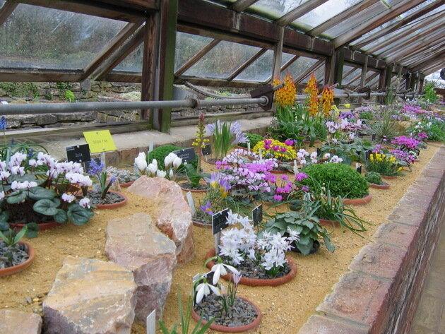 Сад Уизли (Wisley RHS Garden). Великобритания