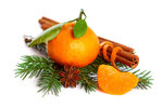 Mandarin orange, cinnamon, anise and tree branch isolated on white background-