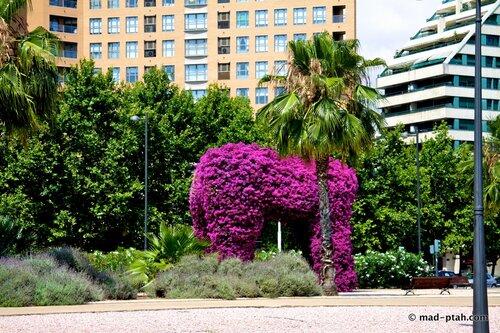 валенсия, испания, деревья возле парка