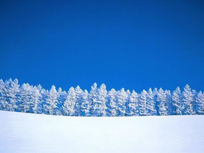 Первый снег на ладони мои упал. Зимние обои