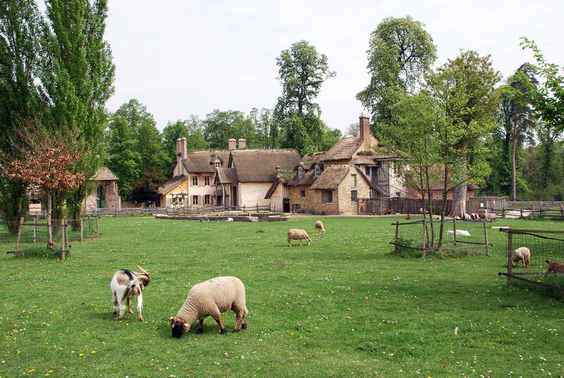 Картинка деревни с животными фото