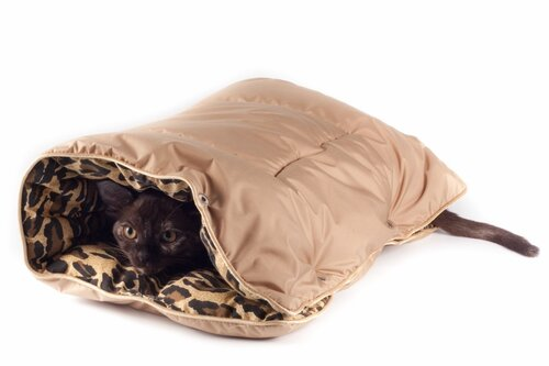 Как сшить чехол для переноски кошки фото 734