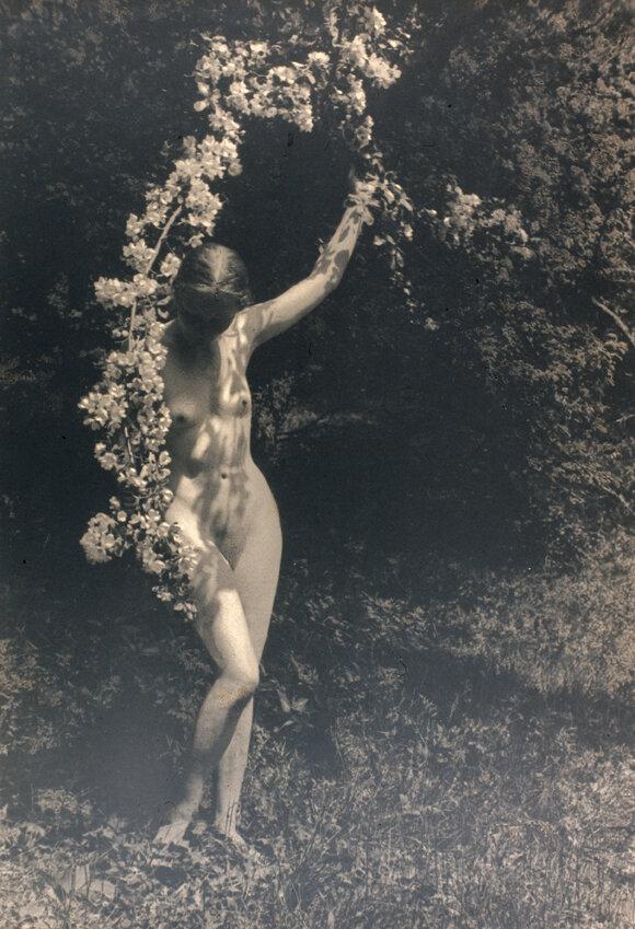 1920-е. Юрий Еремин. Весна