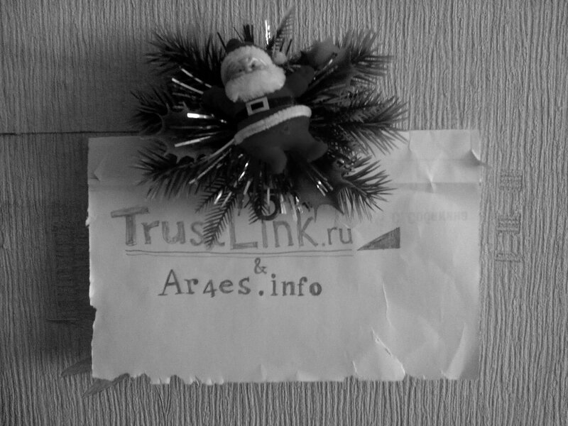 Фотография на конкурс TrustLink