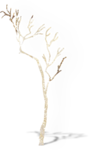 NLD Addon Tree sh.png