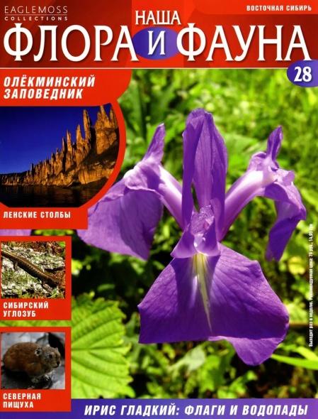 Книга Журнал: Наша флора и фауна №№28-36(2013)