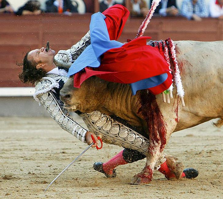Хулио Апарисио и бык