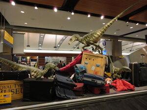 багаж при авіаперельотах