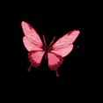 Fairymist_papillons6.png