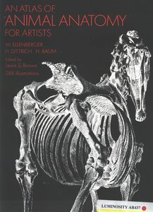 Human Anatomy for Artists and How It Helps  Udemy Blog
