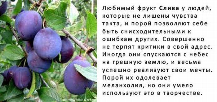 http://img-fotki.yandex.ru/get/5823/130422193.8f/0_6fb9c_3f085622_orig