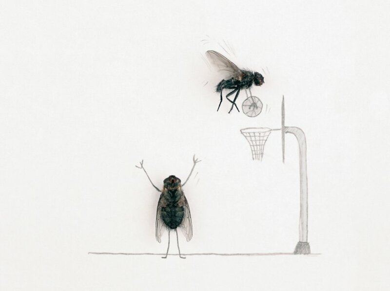 Картинка муха смешная, хохломская роспись