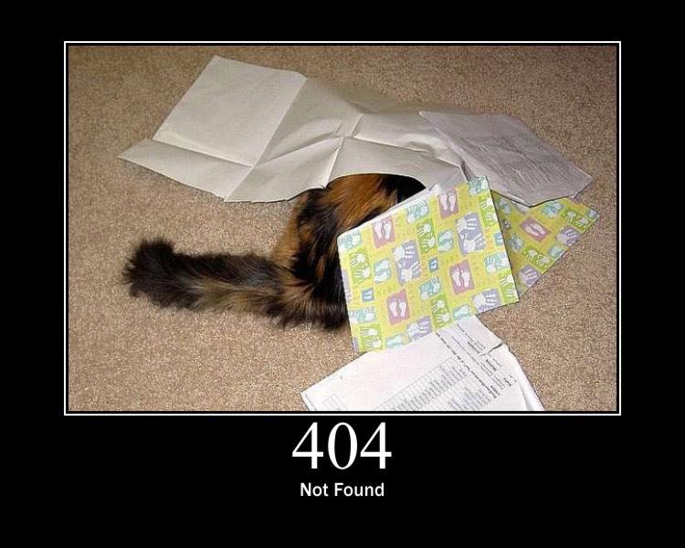Ошибки лучше измерять в кошках
