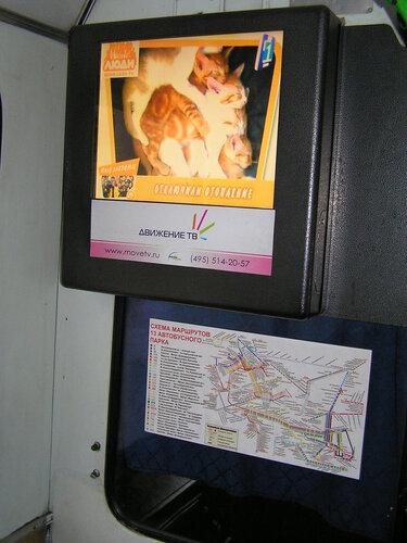 Схема автобусных маршрутов и телевизор в автобусе