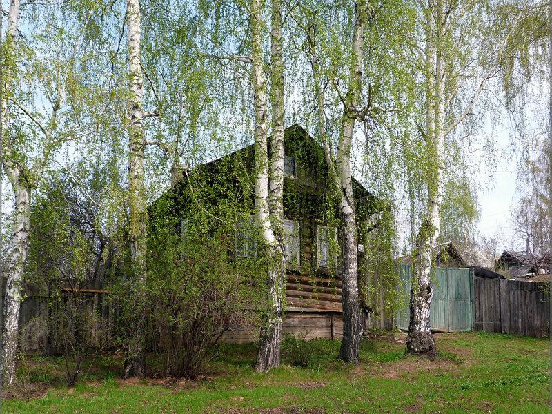 В зеленой дымке весенних берез...