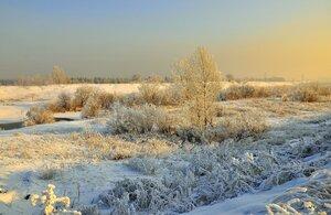 декабрьский пейзаж.