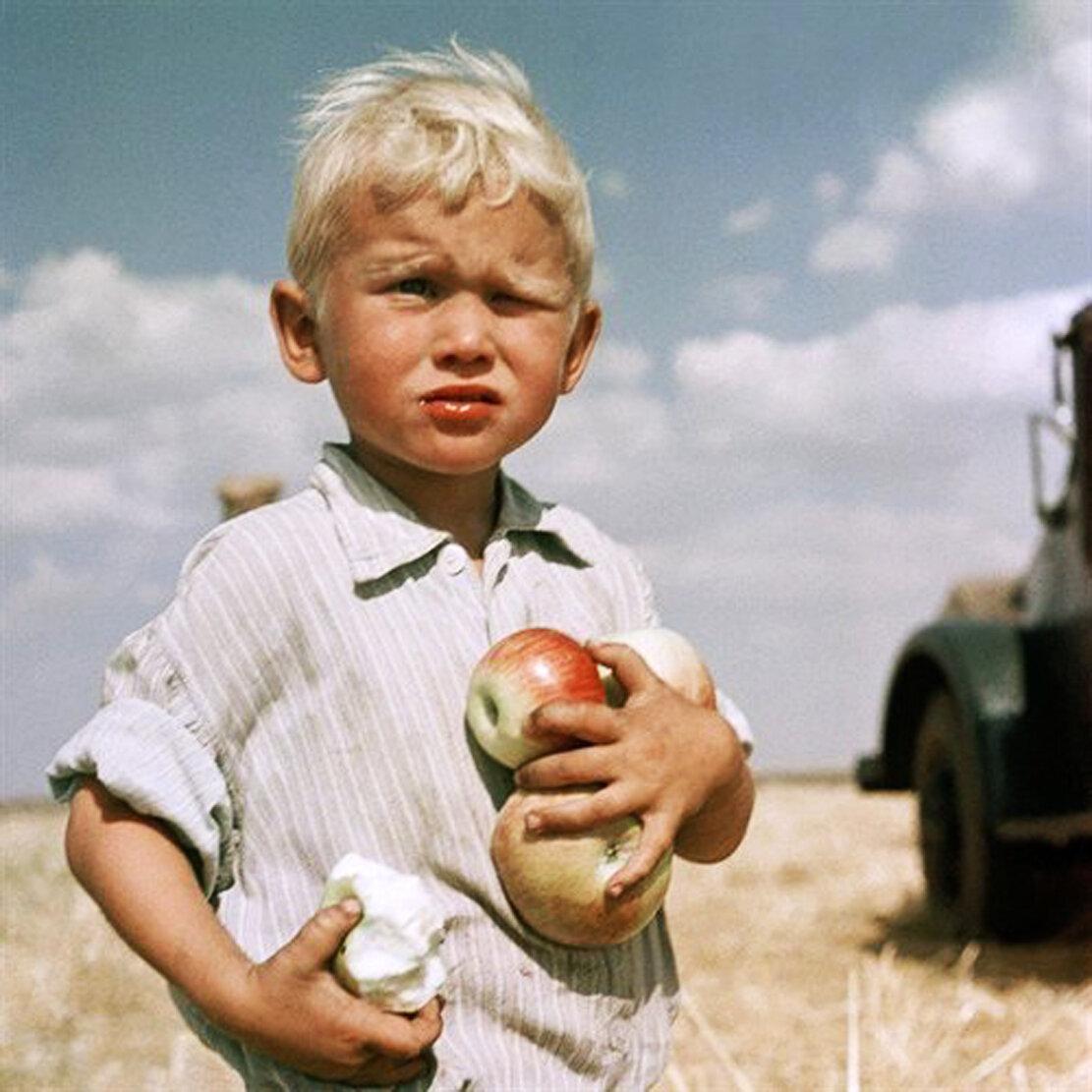 1962. Целина молодела. Кустанайская область