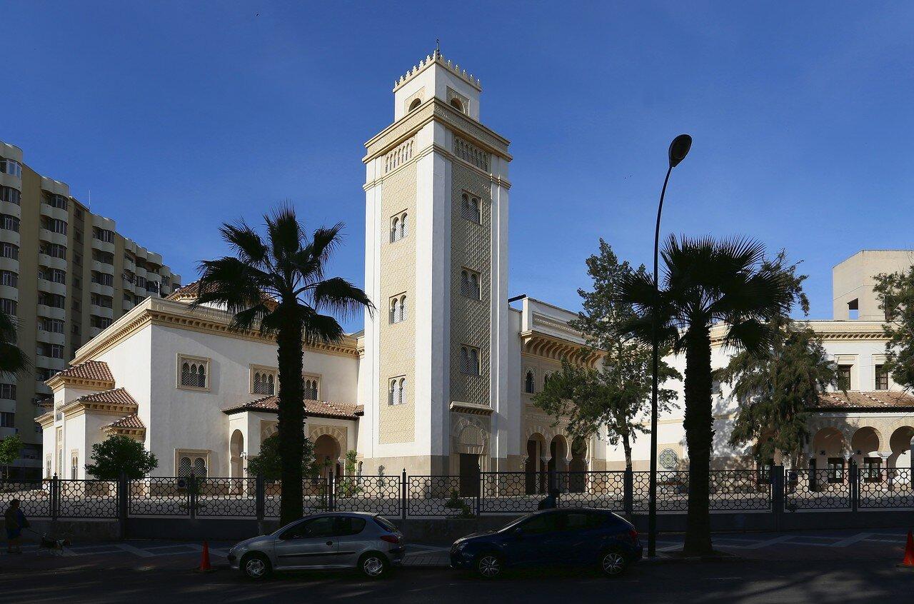 Малага. Мечеть Аль-Андалуса (Mezquita de al-Ándalus)