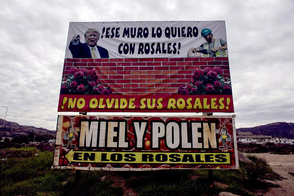 16. Уличные торговцы торгую на границе на северо-западе Мексики, 14 февраля 2017. (Фото Guiller