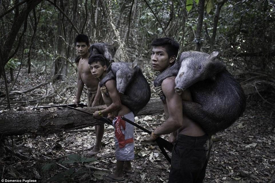 Племя Ава, женщины которого вскармливают грудью животных