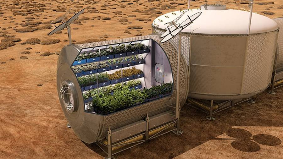 NASA Grows Edible Vegetables in Space