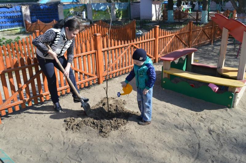 «День древонасаждений» в детском саду № 12 «Березка»