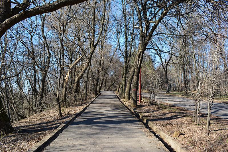 парк в апреле дорога.jpg