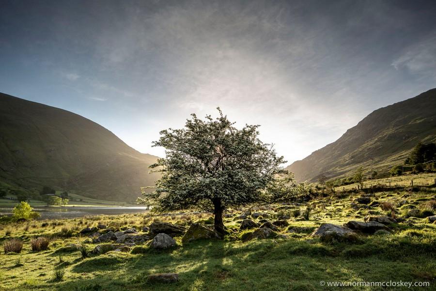 Неброская красота Ирландии