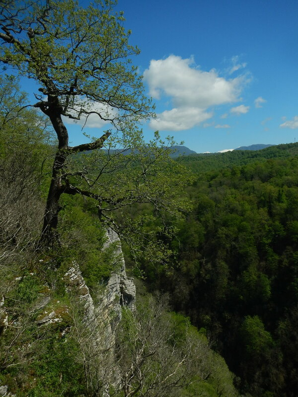 Скалы на реке Хоста