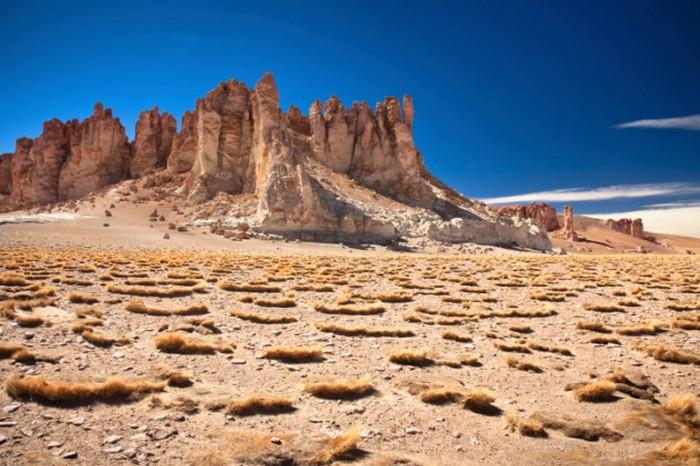 6. Нитраты Атакамы Еще Чарльз Дарвин прозвал южноамериканскую пустыню Атакама тем место, где ничего