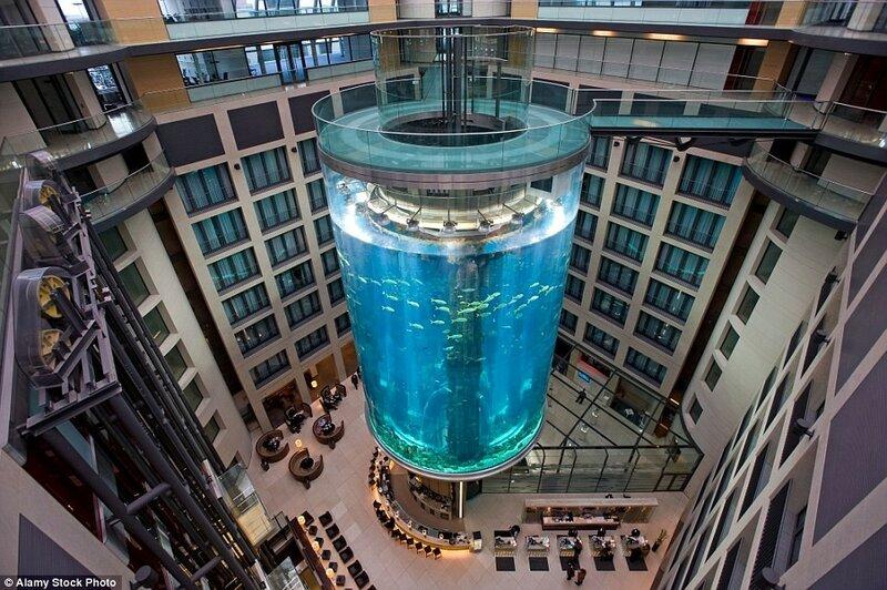 Аквариум AquaDom, который находится во внутреннем дворе гостиницы «Radisson Blu» в Берлине, имеет объём более миллиона литров и является самым большим аквариумом цилиндрической формы в мире. Лифт позволяет посетителям понаблюдать за 1500 рыбами 97-ми различных видов изнутри аквариума.