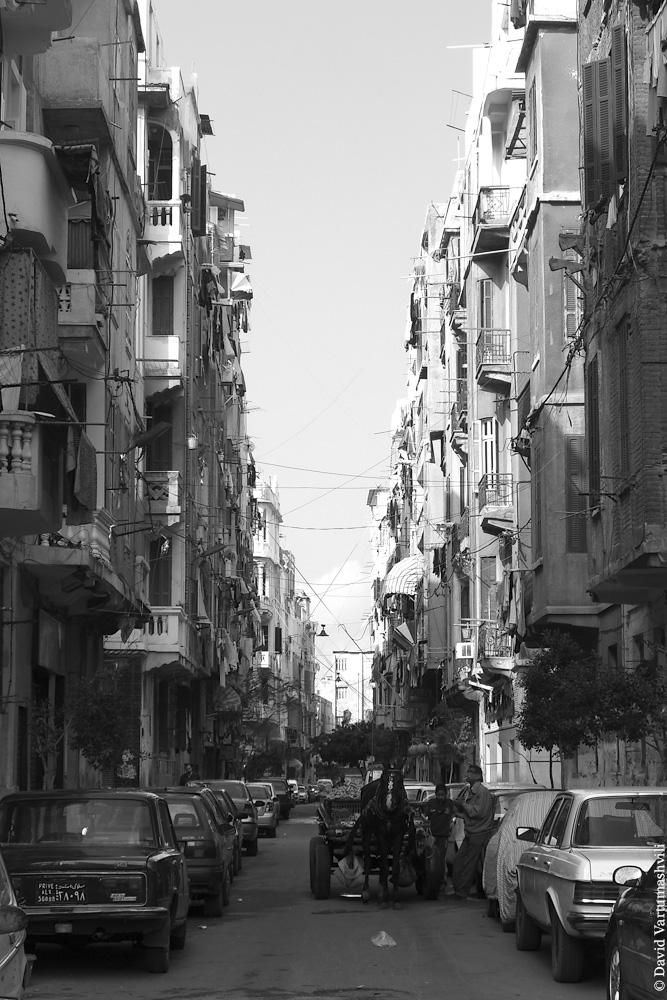 Египет, Александрия