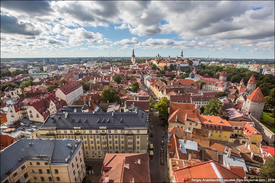 Старый город в Таллине