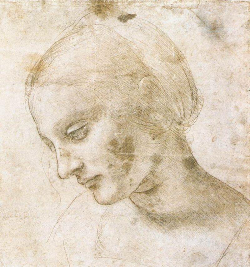 800px-Leonardo_da_Vinci_-_study_of_a_woman's_head.jpg