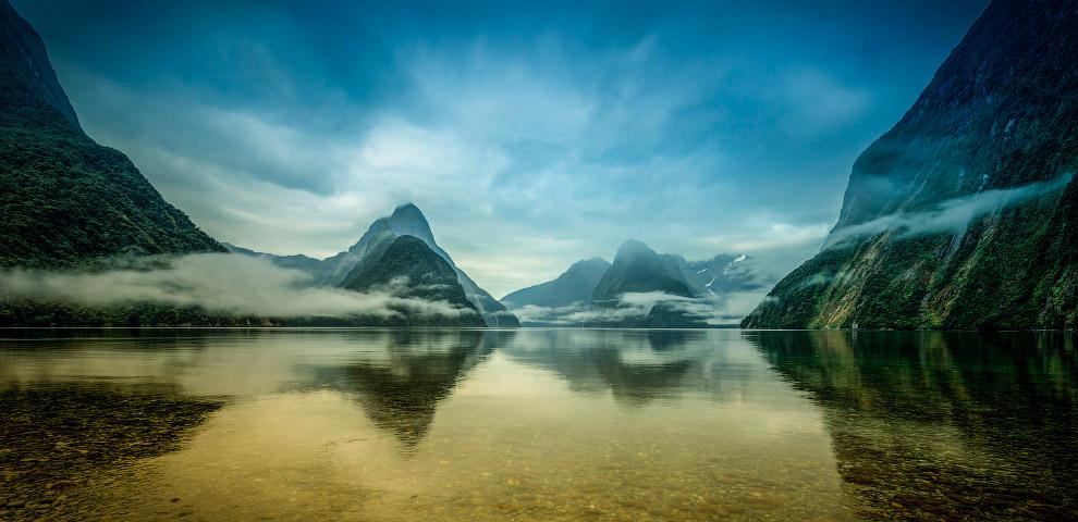 21. Только в Новой Зеландии сохранились останки истреблённых около 500 лет назад гигантских нел