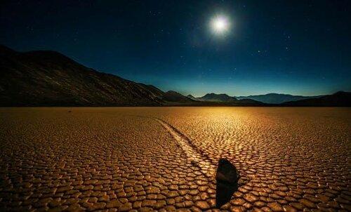 Интересные факты о Пустыне